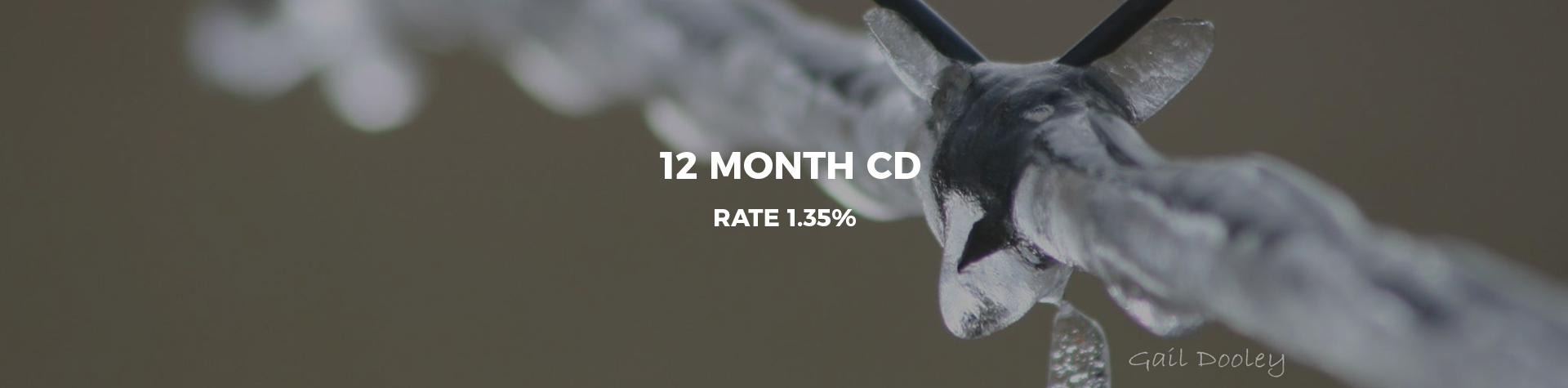 12 Month CD Rate